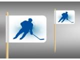 vlaječky hokejista