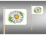 vlaječka kopretina