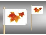 vlaječky podzimní listí
